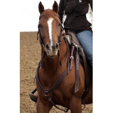 Barefoot Variable Breastplate