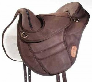 Torsion treeless saddle