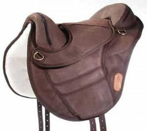 Torsion treeless saddle